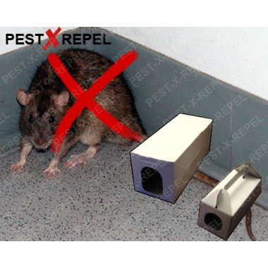 Statie de intoxicare impotriva sobolanilor (Rat Bait)